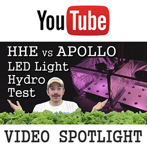 Apollo UFO vs HHE COB LED Grow-Light Experiment (Hydroponic Lettuce) -YouTube