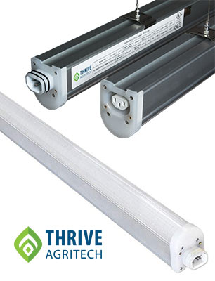 Thrive Agritech Infinity Linear LED Grow Lights Product Review