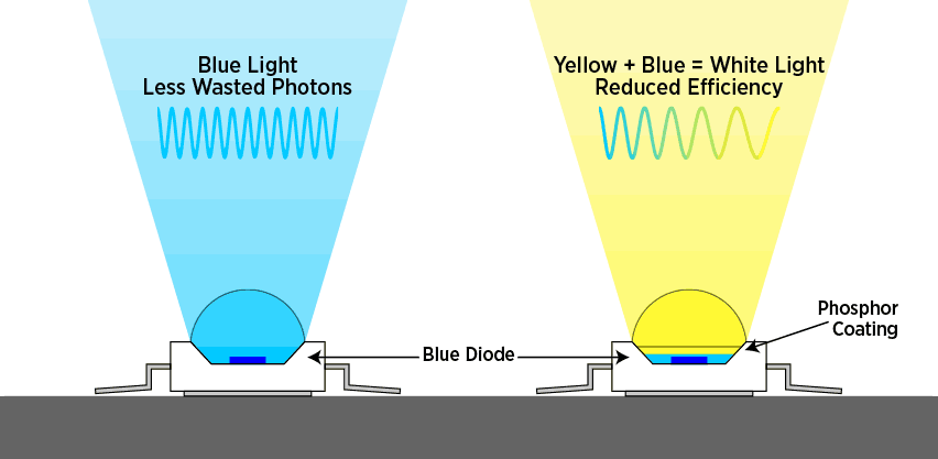 Blue LED Diode with Phosphor Coating for Full Spectrum Light