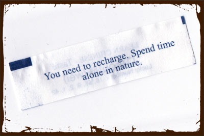 Gardening Fortune: You need to recharge. Spend time alone in nature.