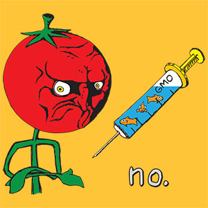 no. Anti-GMO Tomato / Fish Meme [Gardening T-Shirt Design]