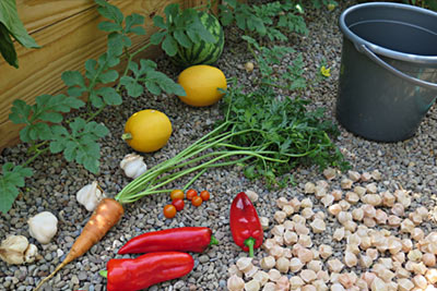 Pesticide-Free Healthy Garden Vegetables