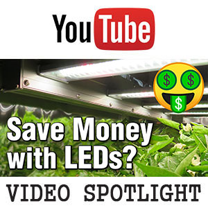 Electrical Savings- LED Payoff Cost Calculator -High Efficiency Upgrades for Home & Grow Lights -YouTube