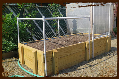 Self Watering Raised Bed Design How To