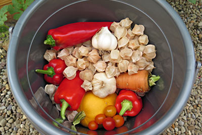Bountiful Harvest: Peppers, Ground Cherries, Garlic, Carrot, Tomatoes