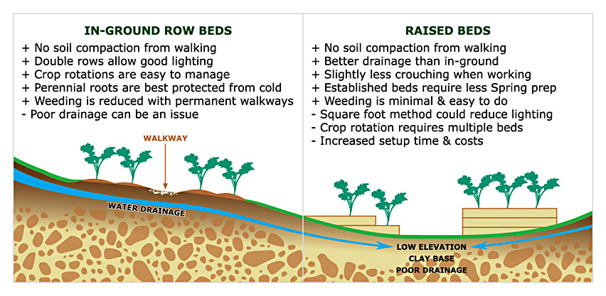 In-ground Row Beds vs Raised Beds